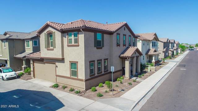 16245 W La Ventilla Way, Goodyear, AZ 85338 (MLS #6253823) :: Yost Realty Group at RE/MAX Casa Grande
