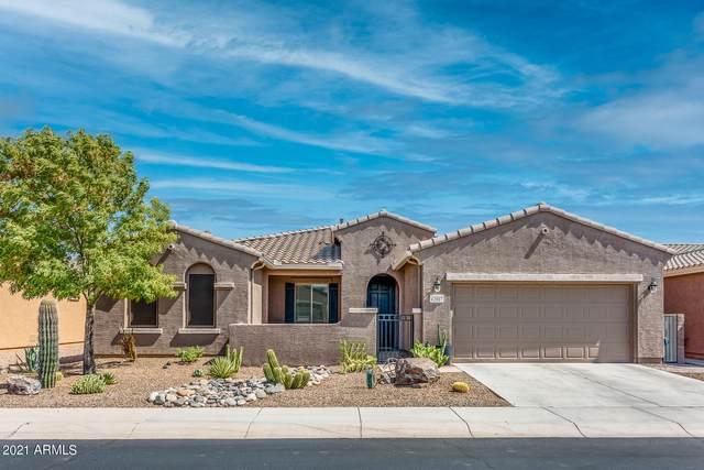 42807 W Darter Drive, Maricopa, AZ 85138 (MLS #6253841) :: Power Realty Group Model Home Center