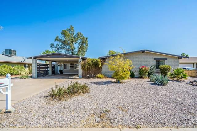 3620 W Cholla Street, Phoenix, AZ 85029 (MLS #6253854) :: Yost Realty Group at RE/MAX Casa Grande