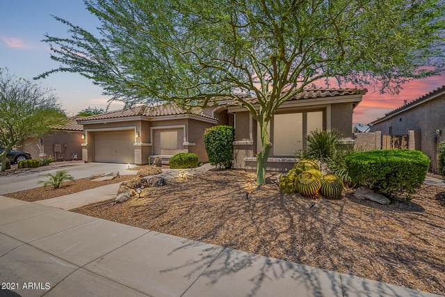 4326 E Melinda Lane, Phoenix, AZ 85050 (MLS #6253858) :: Arizona Home Group