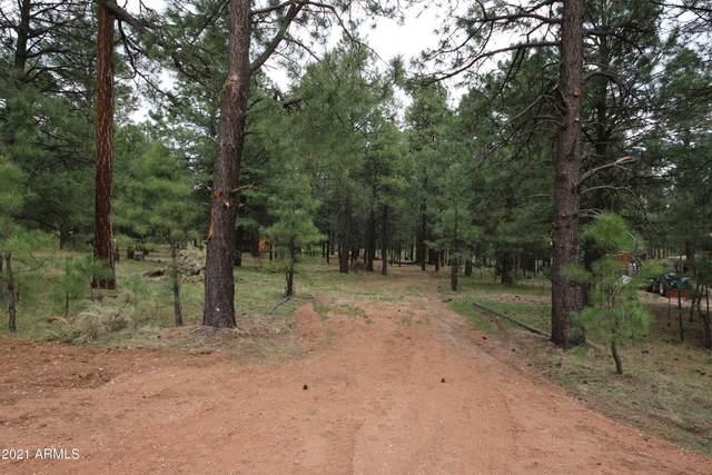 1371 Mineral Drive, Forest Lakes, AZ 85931 (MLS #6253869) :: The Ellens Team