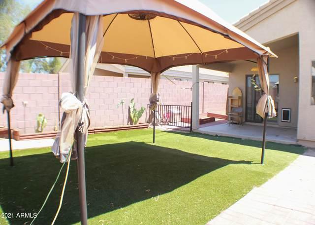 23338 W Ashleigh Marie Drive, Buckeye, AZ 85326 (MLS #6253879) :: Yost Realty Group at RE/MAX Casa Grande