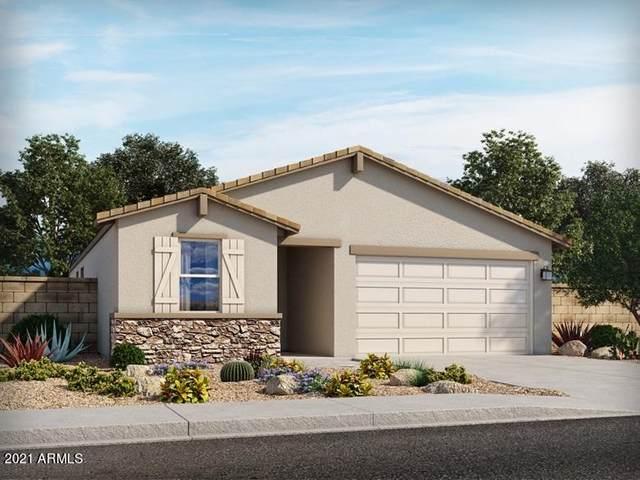 4602 W Greenleaf Drive, San Tan Valley, AZ 85142 (MLS #6253898) :: Maison DeBlanc Real Estate