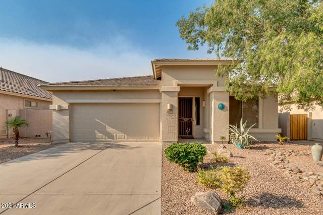184 E Piccolo Court, San Tan Valley, AZ 85143 (MLS #6253925) :: The Everest Team at eXp Realty