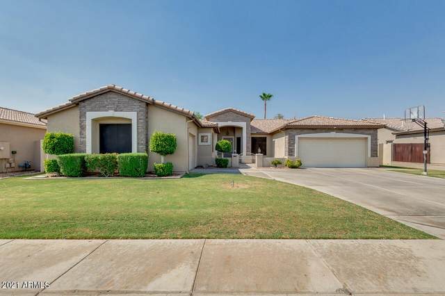 2130 W Mulberry Drive, Chandler, AZ 85286 (MLS #6253931) :: The Everest Team at eXp Realty