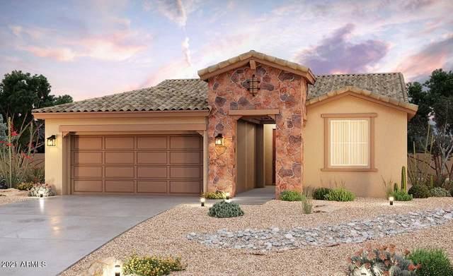 40830 W Haley Drive, Maricopa, AZ 85138 (MLS #6253940) :: Maison DeBlanc Real Estate