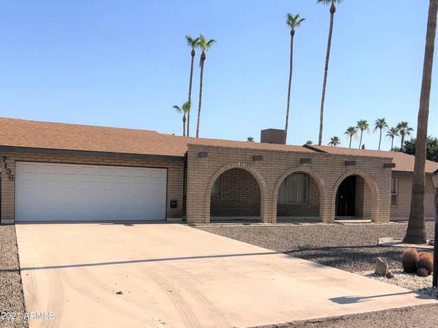 7136 W Villa Rita Drive, Glendale, AZ 85308 (MLS #6253941) :: Yost Realty Group at RE/MAX Casa Grande