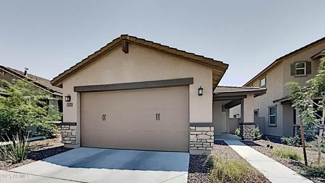 13303 N 143RD Drive, Surprise, AZ 85379 (MLS #6253947) :: Yost Realty Group at RE/MAX Casa Grande