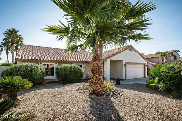 5437 E Grandview Road, Scottsdale, AZ 85254 (MLS #6253962) :: Relevate | Phoenix