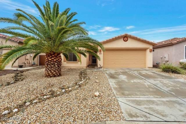 11045 W Utopia Road, Sun City, AZ 85373 (MLS #6253967) :: Lucido Agency
