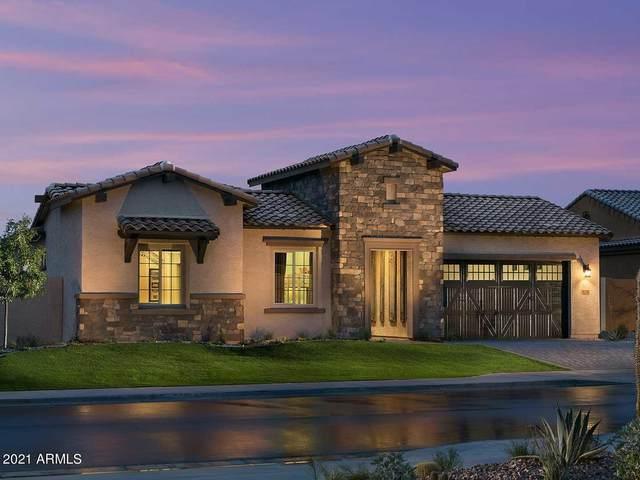 9276 W Louise Drive, Peoria, AZ 85383 (MLS #6253973) :: Maison DeBlanc Real Estate