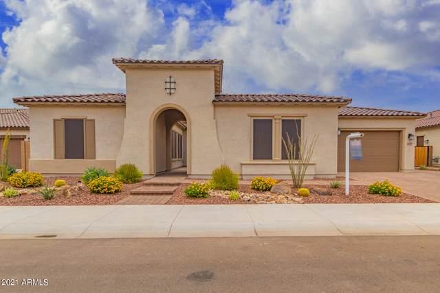 4070 E Yellowstone Place, Chandler, AZ 85249 (MLS #6253991) :: Yost Realty Group at RE/MAX Casa Grande
