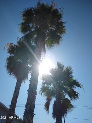 17200 W Bell Road, Surprise, AZ 85374 (MLS #6253997) :: Howe Realty
