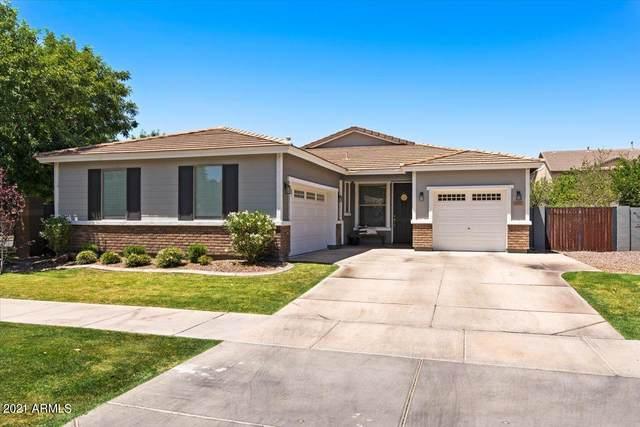 4092 E Park Avenue, Gilbert, AZ 85234 (MLS #6254049) :: Arizona Home Group