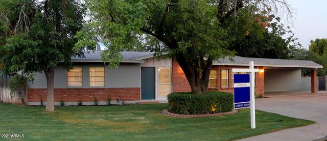 665 W Ivy Circle, Mesa, AZ 85201 (MLS #6254134) :: My Home Group
