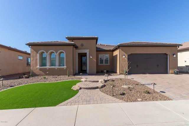 36834 N Stoneware Drive, San Tan Valley, AZ 85140 (MLS #6254138) :: The Helping Hands Team