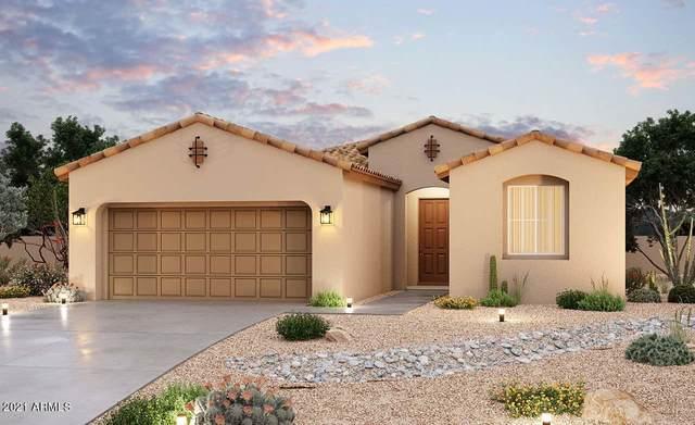 40860 W Haley Drive, Maricopa, AZ 85138 (MLS #6254175) :: Yost Realty Group at RE/MAX Casa Grande