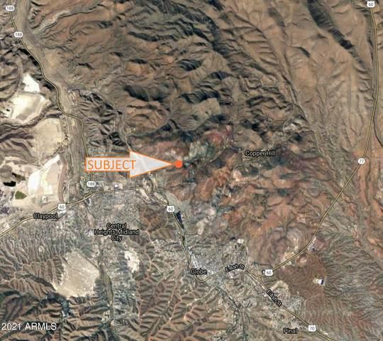 2625 N Copper Hills Road, Globe, AZ 85501 (MLS #6254201) :: Executive Realty Advisors
