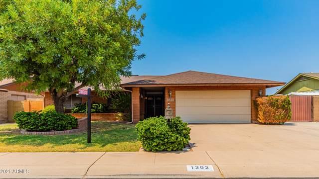 1202 W Cheyenne Drive, Chandler, AZ 85224 (MLS #6254216) :: Yost Realty Group at RE/MAX Casa Grande