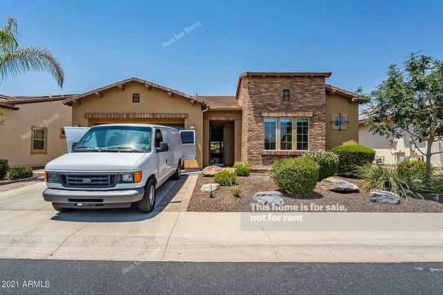 1574 E Elysian Pass, San Tan Valley, AZ 85140 (MLS #6254217) :: The Helping Hands Team