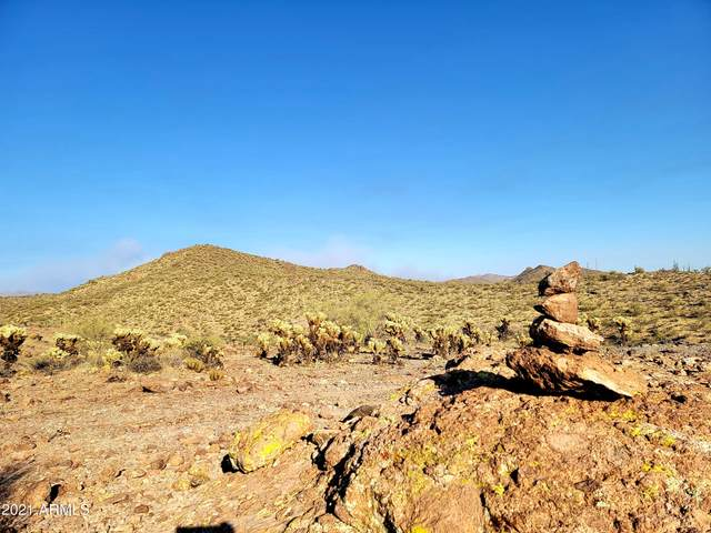 0 N Elephant Butte Road, Queen Valley, AZ 85118 (MLS #6254224) :: Keller Williams Realty Phoenix