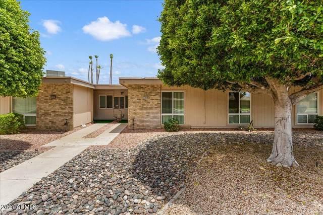 11018 W Thunderbird Boulevard, Sun City, AZ 85351 (MLS #6254228) :: Nate Martinez Team