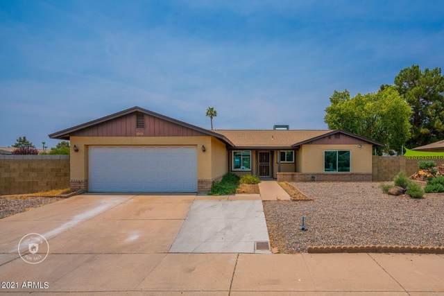 10020 N 49TH Drive, Glendale, AZ 85302 (MLS #6254249) :: Yost Realty Group at RE/MAX Casa Grande