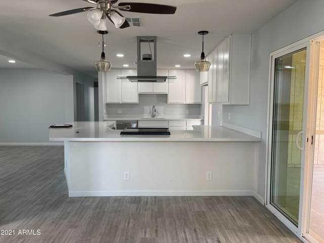 12643 N 30TH Drive, Phoenix, AZ 85029 (MLS #6254277) :: Yost Realty Group at RE/MAX Casa Grande