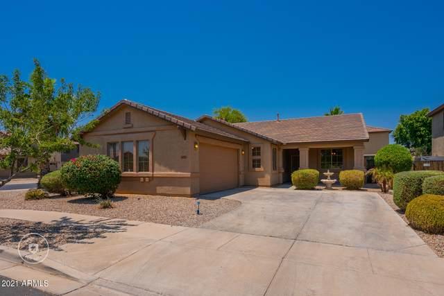 11562 N 145TH Avenue, Surprise, AZ 85379 (MLS #6254283) :: Yost Realty Group at RE/MAX Casa Grande