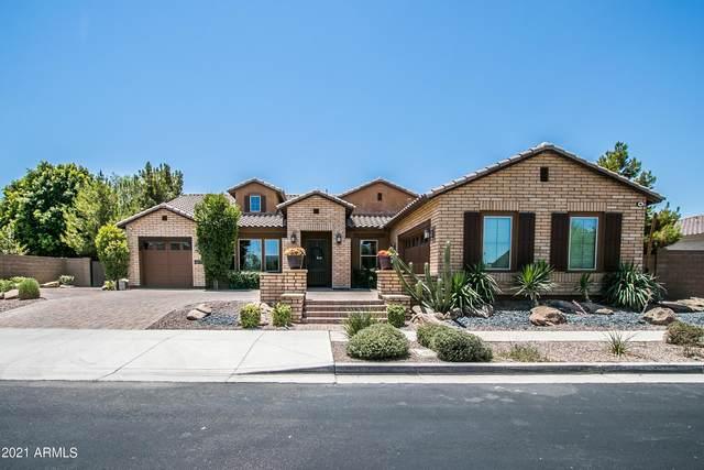3009 E Valencia Drive, Phoenix, AZ 85042 (MLS #6254296) :: Yost Realty Group at RE/MAX Casa Grande