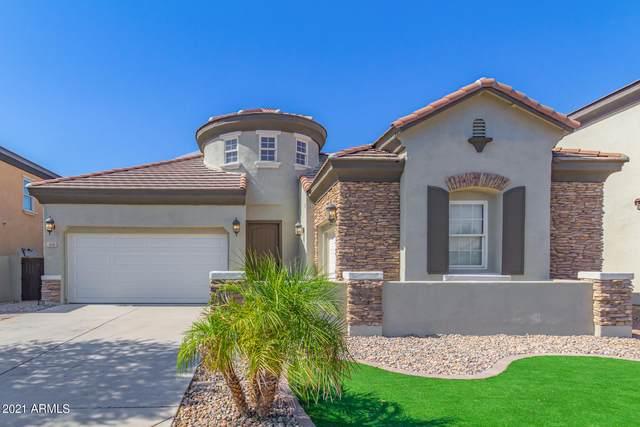 900 E Canyon Way, Chandler, AZ 85249 (MLS #6254324) :: Yost Realty Group at RE/MAX Casa Grande