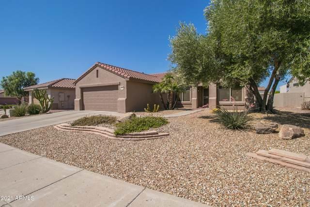 15577 W Grand Creek Lane, Surprise, AZ 85374 (MLS #6254341) :: The Dobbins Team
