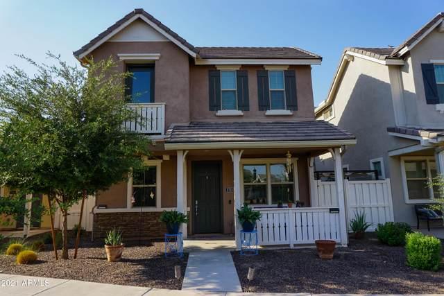 3713 E Robert Street, Gilbert, AZ 85295 (MLS #6254343) :: Jonny West Real Estate