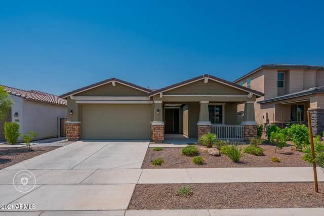 18187 W Via Montoya Drive, Surprise, AZ 85387 (MLS #6254357) :: The Dobbins Team
