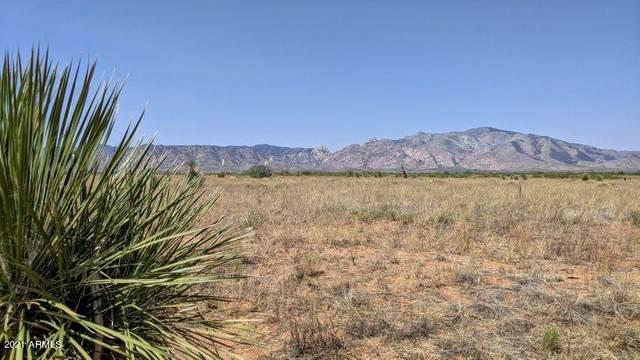 17 Acre Off N. Cloud Road, Pearce, AZ 85625 (MLS #6254374) :: The Daniel Montez Real Estate Group