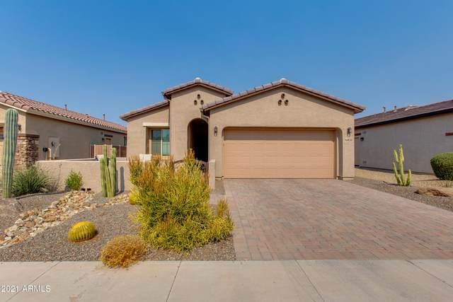 16820 S 178th Drive, Goodyear, AZ 85338 (MLS #6254398) :: My Home Group