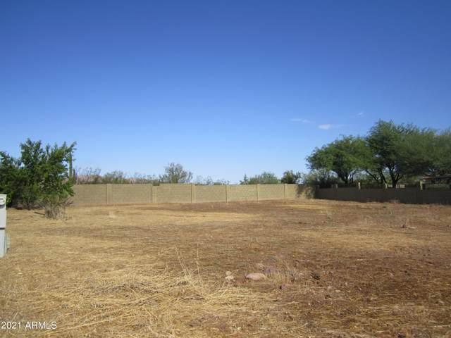 32 S Windy Hill Drive, Roosevelt, AZ 85545 (MLS #6254407) :: Balboa Realty