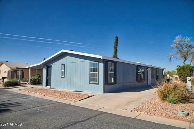 40598 N Eagle Street, Queen Creek, AZ 85140 (MLS #6254440) :: Yost Realty Group at RE/MAX Casa Grande