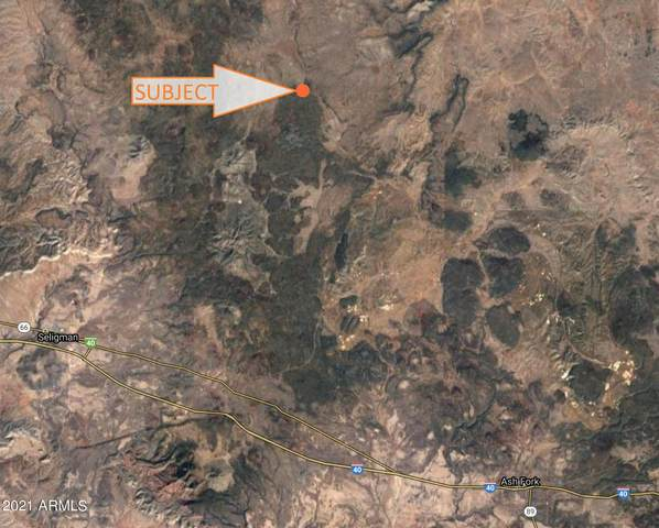 298 N Edwards Ranch Road, Ash Fork, AZ 86320 (MLS #6254455) :: Power Realty Group Model Home Center