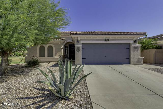 842 E La Costa Place, Chandler, AZ 85249 (MLS #6254463) :: Arizona Home Group