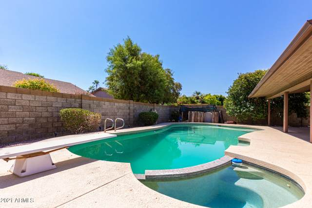 2727 S El Marino, Mesa, AZ 85202 (MLS #6254550) :: Conway Real Estate