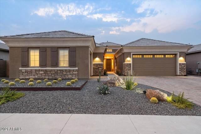 6632 W Dale Lane, Phoenix, AZ 85083 (MLS #6254562) :: Yost Realty Group at RE/MAX Casa Grande