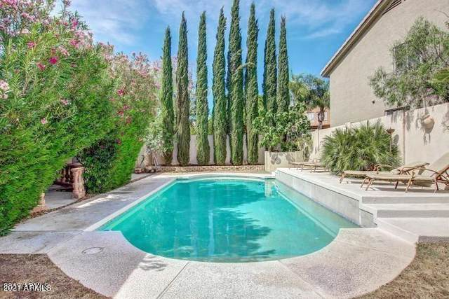 6018 E Old West Way, Scottsdale, AZ 85266 (MLS #6254564) :: Yost Realty Group at RE/MAX Casa Grande