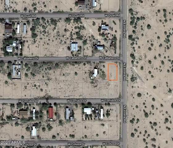 6410 N Estrella Road, Eloy, AZ 85131 (MLS #6254565) :: Keller Williams Realty Phoenix
