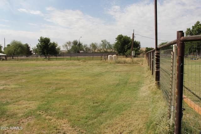 172xx E Pecos Road, Gilbert, AZ 85295 (MLS #6254586) :: CANAM Realty Group