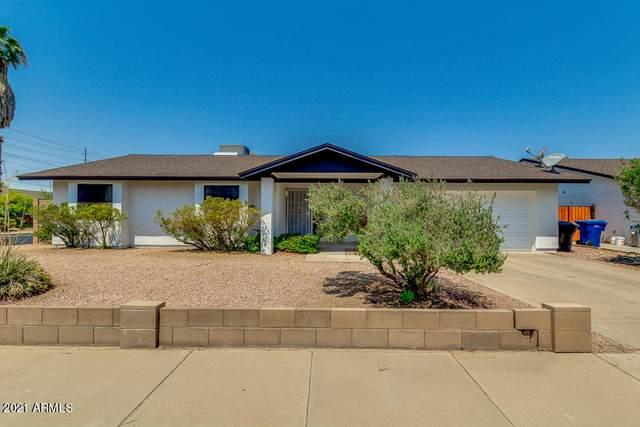 3146 S Stewart Circle, Mesa, AZ 85202 (MLS #6254591) :: Conway Real Estate