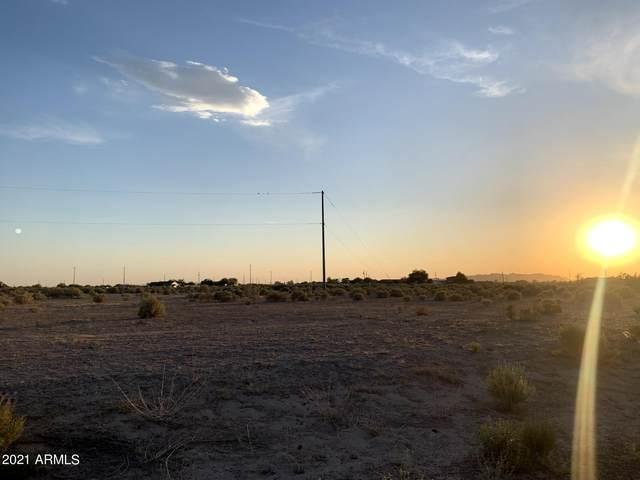 3650 N Bandelier Drive, Eloy, AZ 85131 (MLS #6254600) :: The Ellens Team