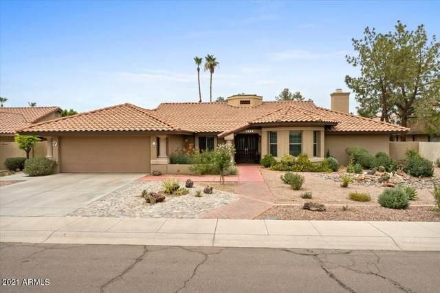 1024 E Vinedo Lane, Tempe, AZ 85284 (MLS #6254624) :: Yost Realty Group at RE/MAX Casa Grande