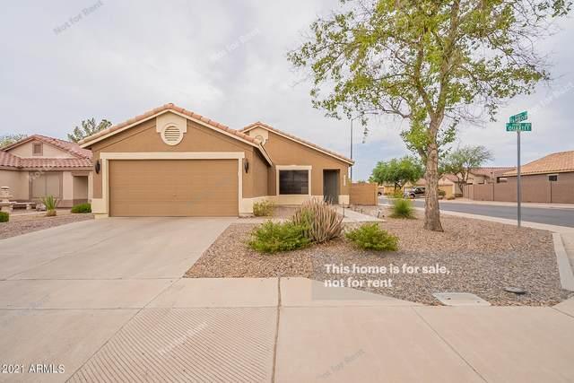 11264 E Quartet Avenue, Mesa, AZ 85212 (MLS #6254666) :: The Helping Hands Team
