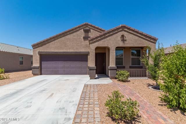 2203 N Ensenada Lane, Casa Grande, AZ 85122 (MLS #6254688) :: Yost Realty Group at RE/MAX Casa Grande